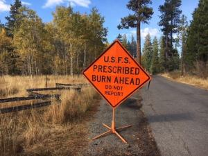 The Lake Tahoe Basin Fall Prescribed Fire Program is scheduled to begin as early as November 2021. Photo credit: Lisa Herron, USDA Forest Service.