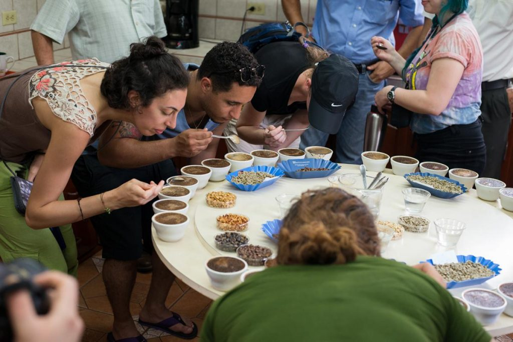 People around a table checking the quality of coffee.