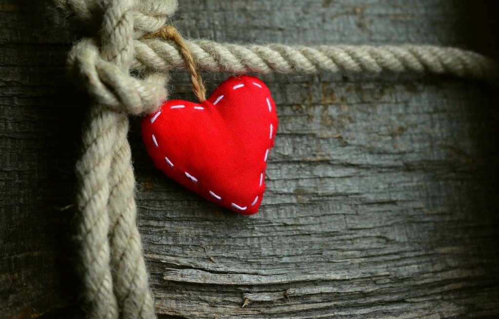 A small heart cushion tied to a tree with a rope