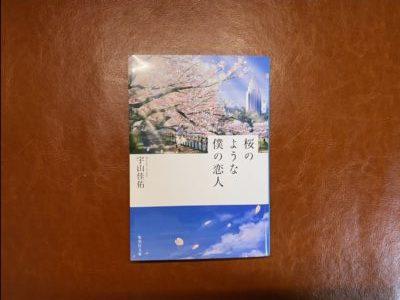 カメラを趣味にしている人にはぜひ読んで欲しい「桜のような僕の恋人」【読書記録#2】