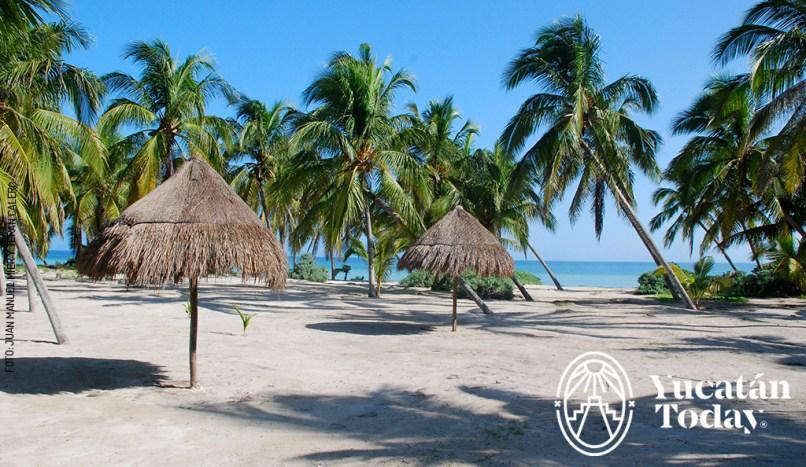 San Crisanto playa
