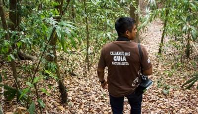 Calakmul-Visit-Calakmul