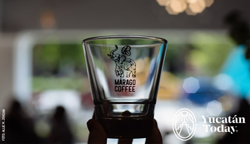 Marago Coffee