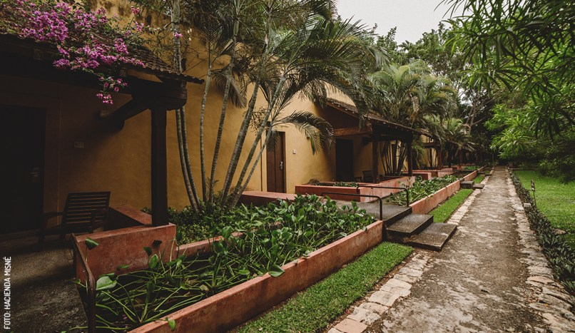 misne-hacienda-rooms-exterior-jardin
