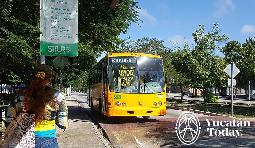 Hop on the Bus in Mérida