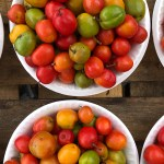 Tropical Flavors of Yucatán