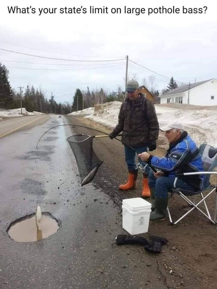 Large Pothole Bass