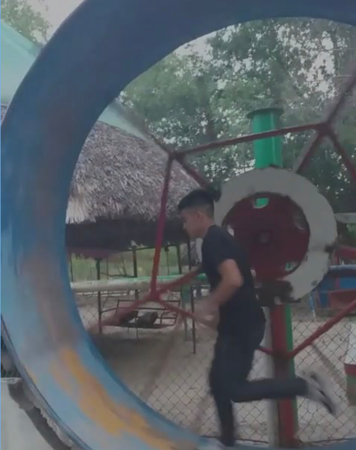 Watch the Human Hamster Till the End