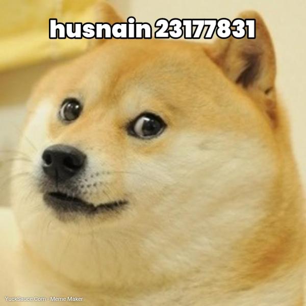 husnain 23177831