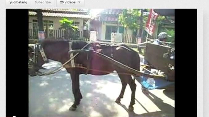 transportasi tradisional