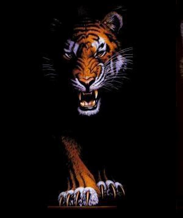 harimau3