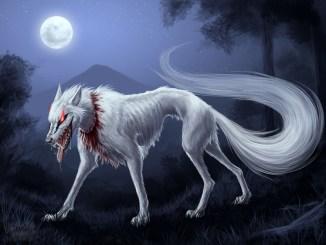 anjing pemburu mayat