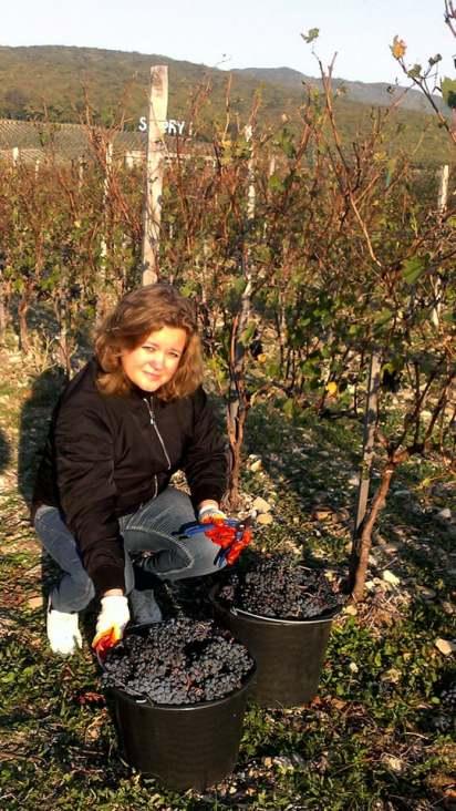 Анастасия Степанченко Искушенный потребитель и ценитель хороших вин