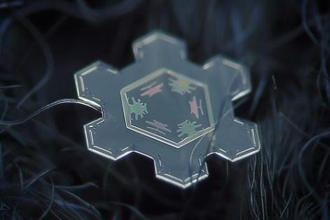 雪の結晶 フロスト