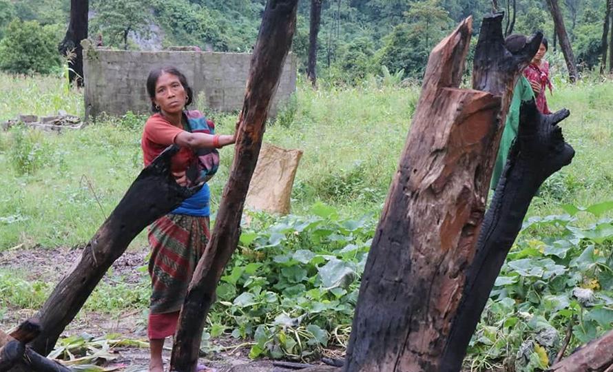 चेपाङको घर जलाएको घटना छानबिन गर्न वन मन्त्रालयको टोली चितवन आउँदै