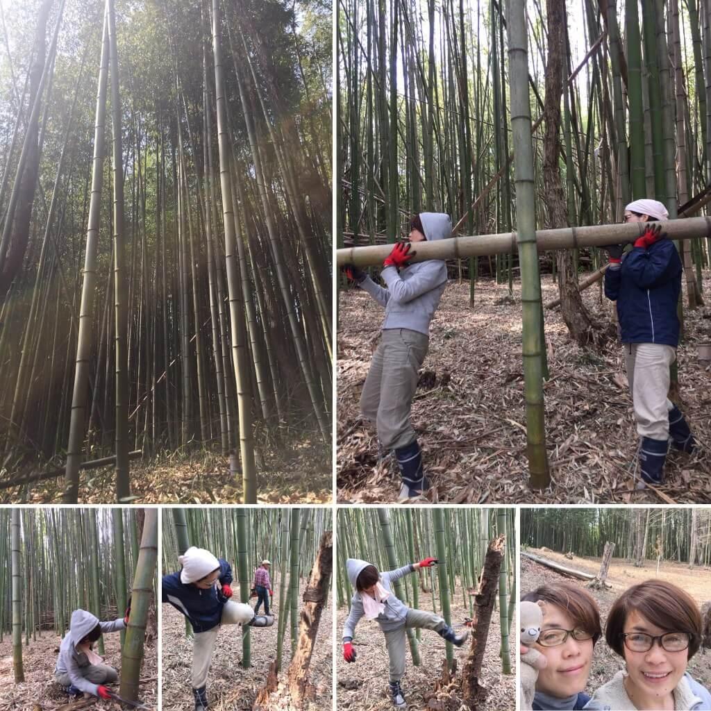 yuiの男気。フリーアナウンサー、家内林業!竹林の手入れを。