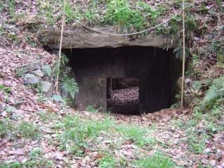 天井の石蓋に使われているのが 筑波変成岩
