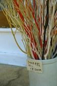 三椏の枝が綺麗に着色されています。