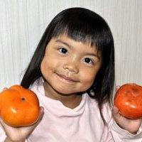 両手に柿をもつ娘イメージ