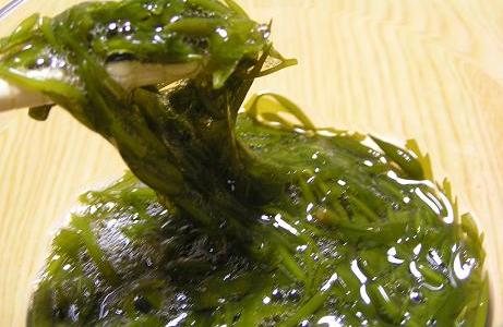 福岡で話題の海藻「アカモク」!栄養成分と効果を改めて調べて、ワカメと比較してみた