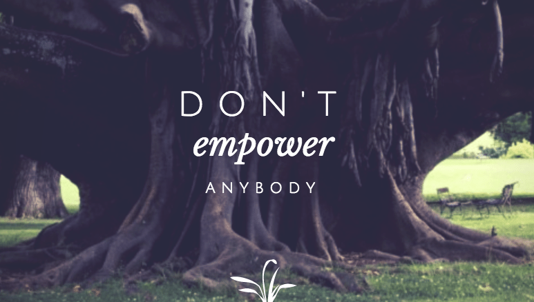 Don't Empower Anybody