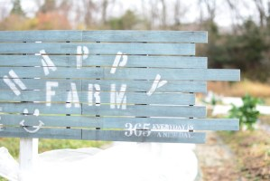 貸し農園「HAPPY LIFE」で季節外れのBBQを満喫♪