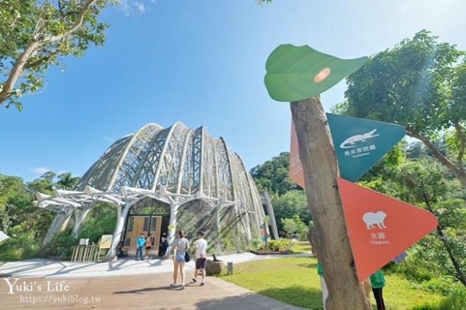 台北親子景點【木柵動物園】熱帶雨林室內館水豚君亮相!動物園室內遊玩攻略