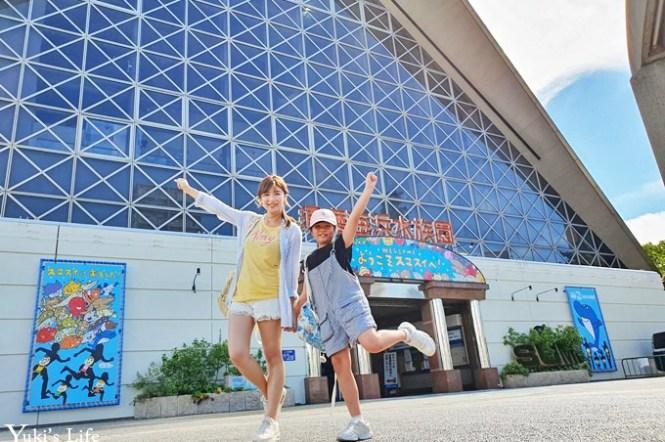 神戶親子景點【須磨海濱水族園】與水豚君一起泡湯×鯊魚魟魚水族館×海豚表演