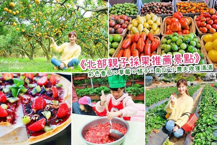 北部親子採果推薦景點》彩色番茄×草莓×橘子~好拍好吃又好玩!展開繽紛假期!