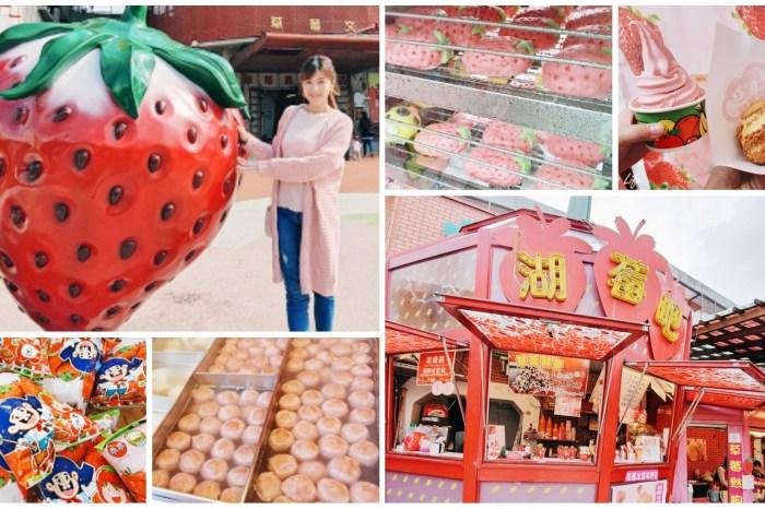巨型草莓經典必訪『大湖酒莊』系列草莓限定美食×苗栗3路線懶人包玩透透
