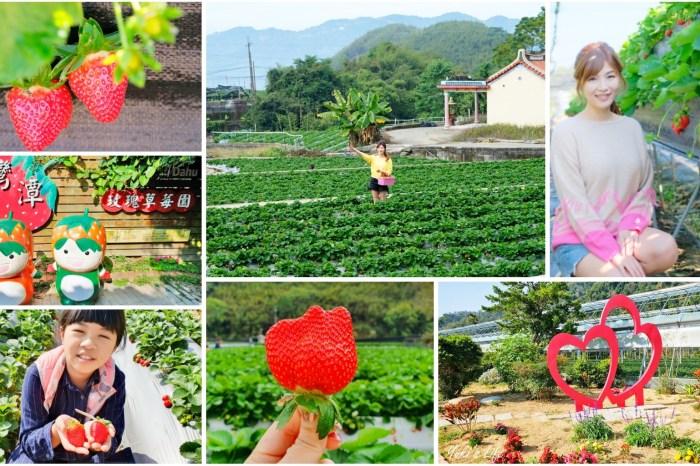 苗栗大湖採草莓推薦這4家!高架草莓,草莓果醬DIY~香甜草莓在這裡!