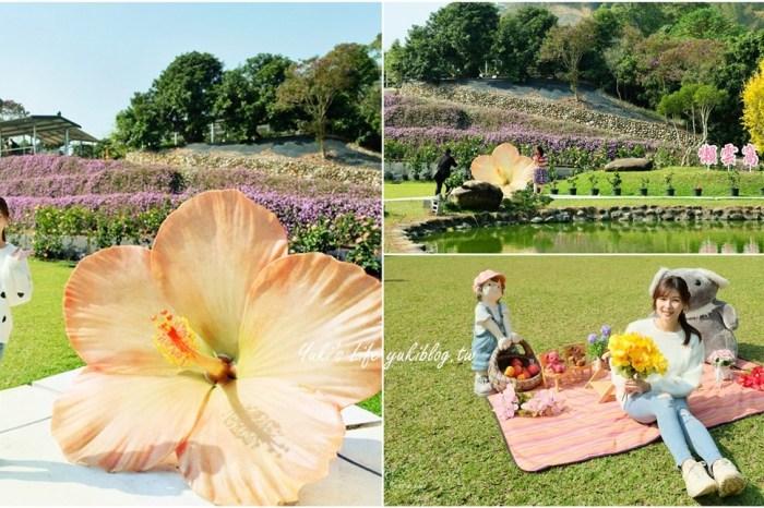 2021南投親子景點新登場!懶雲窩朱槿花~超美花園夢幻美拍下午茶