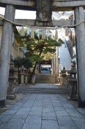 The entrance to a shinto temple