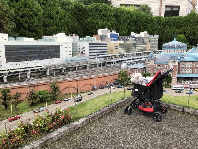【東武ワールドスクウェア】で犬と一緒に世界を回ろう【日光】 東京駅