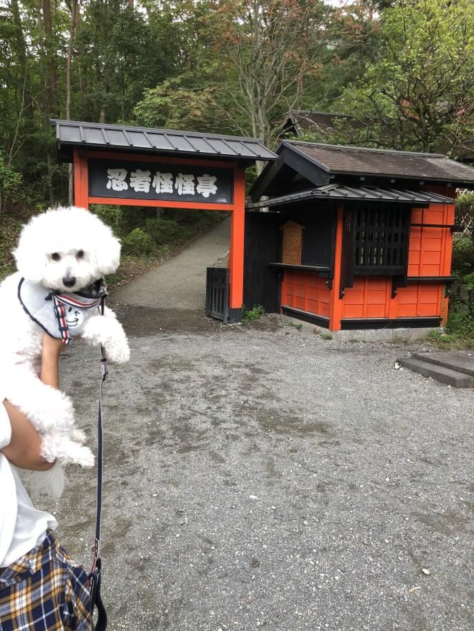 【日光江戸村】犬と一緒に江戸時代へのタイムスリップを楽しもう 忍者怪怪亭