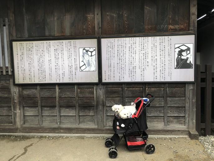 【日光江戸村】犬と一緒に江戸時代へのタイムスリップを楽しもう 看板