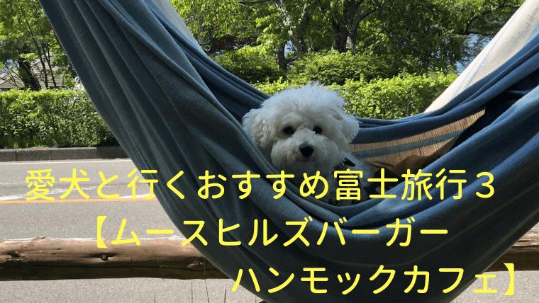 愛犬と行くおすすめ富士旅行3【ムースヒルズバーガー・ハンモックカフェ】 アイキャッチ
