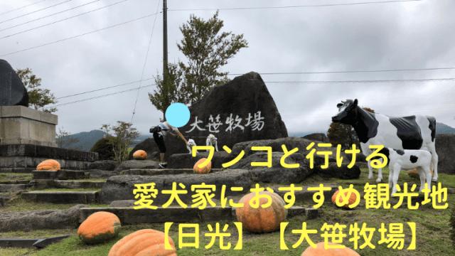 【日光】【大笹牧場】ワンコと行ける愛犬家におすすめ観光地 (1) アイキャッチ