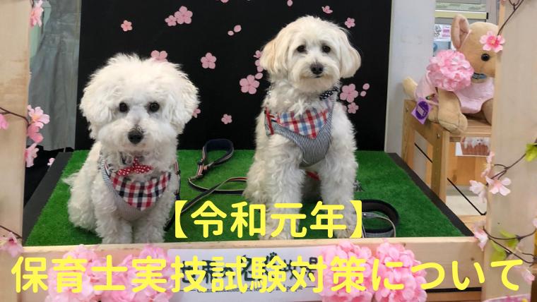 【平成31年】保育士実技試験対策について アイキャッチ