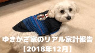 ゆきかざ家のリアル家計報告【2018年12月】 アイキャッチ
