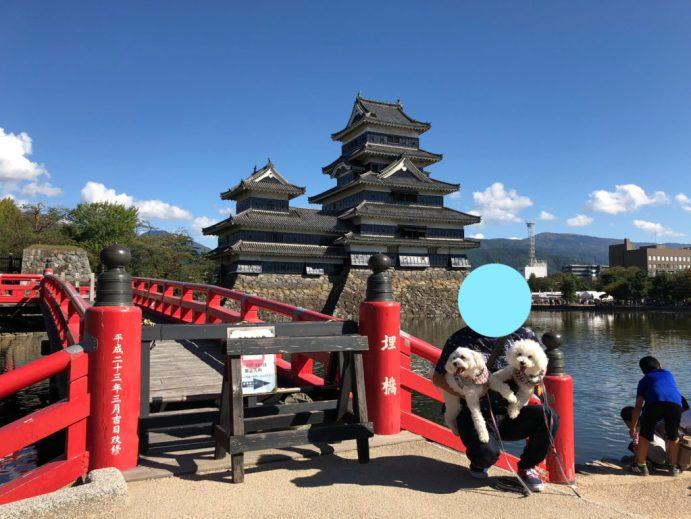 【松本城】を犬と一緒に楽しむには?~本丸庭園の外までならOK~ 埋橋