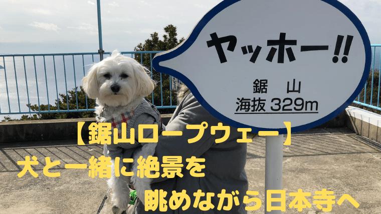 【鋸山ロープウェー】 犬と一緒に絶景を 眺めながら日本寺へ アイキャッチ