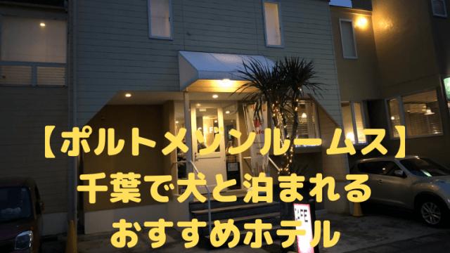 【ポルトメゾンルームス】 千葉で犬と泊まれる おすすめホテル アイキャッチ