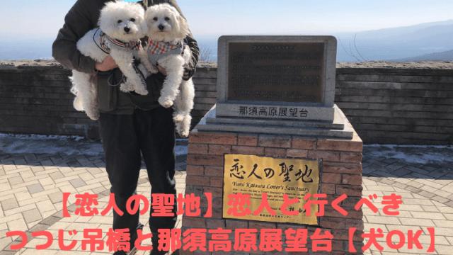 【恋人の聖地】恋人と行くべき つつじ吊橋と那須高原展望台【犬OK】 アイキャッチ