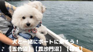 犬と一緒にボートに乗ろう! 【五色沼】【毘沙門沼】【福島】 アイキャッチ