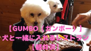 【GUMBO(ガンボー)】 犬と一緒に入れるレストラン【軽井沢】 アイキャッチ