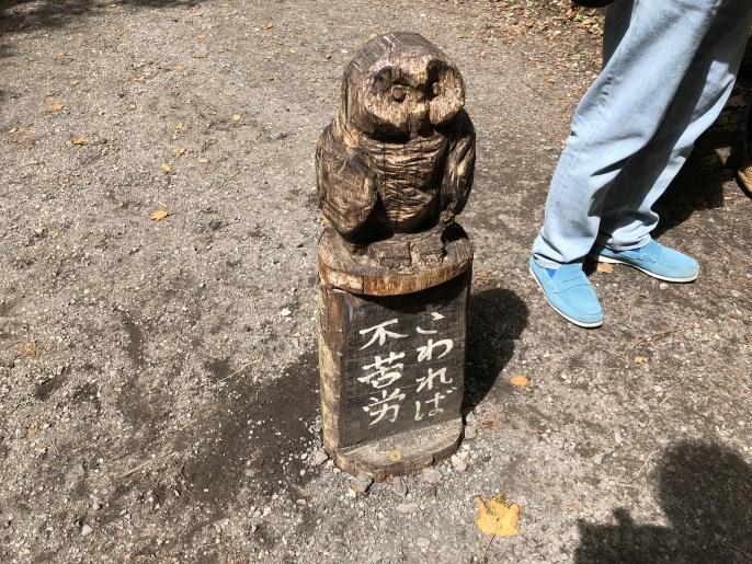 【白糸の滝】軽井沢屈指の観光地を犬と楽しむ方法紹介【軽井沢】 不苦労