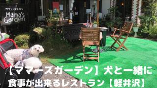 【ママーズガーデン】犬と一緒に 食事が出来るレストラン【軽井沢】 アイキャッチ