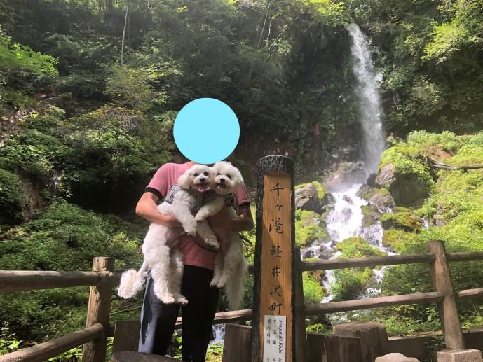 【千ヶ滝せせらぎの道】で犬と一緒にハイキングを楽しもう【軽井沢】 千ヶ滝2
