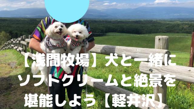 【浅間牧場】犬と一緒に ソフトクリームと絶景を 堪能しよう【軽井沢】 アイキャッチ